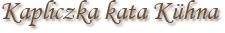 Kapliczka kata Kühna