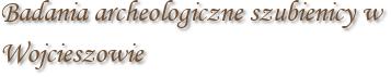 Badania archeologiczne szubienicy w Wojcieszowie