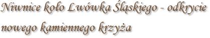 Niwnice koło Lwówka Śląskiego - odkrycie nowego kamiennego krzyża